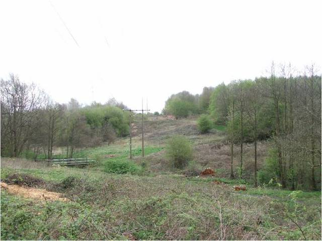 Tamworth-nature-reserve-site-after-clearance