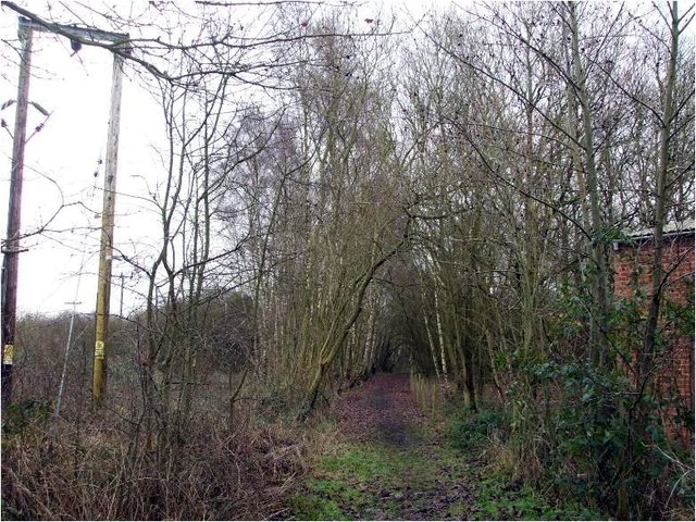 Northampton-2014-cleared-footpath